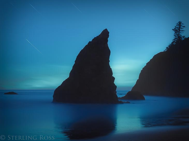 Bows and Arrows - Fine Art Photography of the Olympic Peninsula