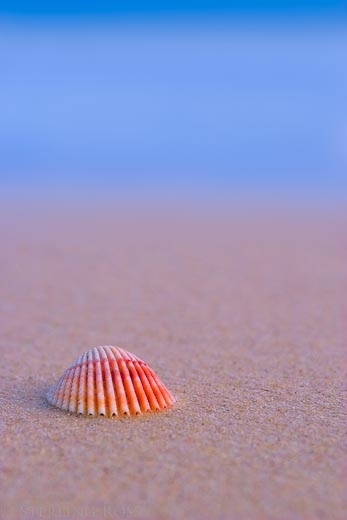 There is Nothing Lonely About Being Alone - Fine Art Photography of Australia Coast